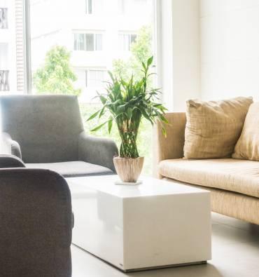 Garde meubles et vente de cartons